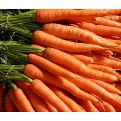 Carrot Approx 500g
