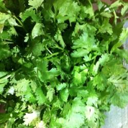 Coriander Leaves Malli 100g