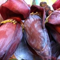 Gavar Phali Cluster Beans 500g