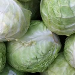 Cabbage 500g